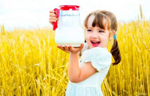 Польза молока и его заменителей
